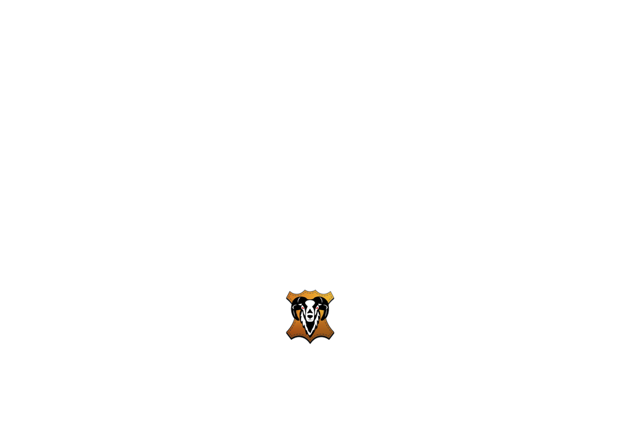 https://www.aileathermarket.com/wp-content/uploads/2021/01/alileather_logo_manufactura.png